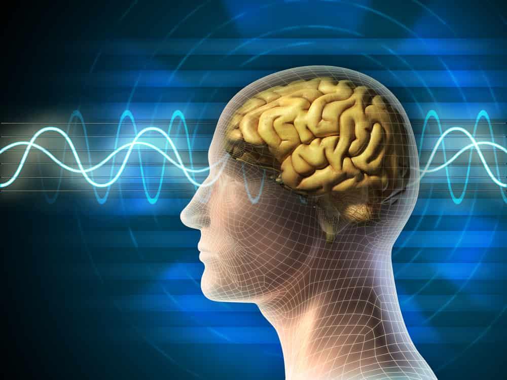 lo que pasa en nuestro cerebro mientras dormimos|cosas que pasan mientras dormimos y no nos enteramos